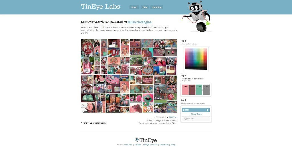 Tineye-url-selection