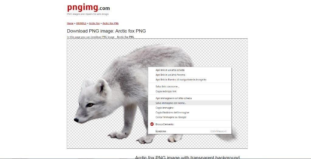 Possiamo scaricare le immagini di Pngimg tramite mouse o tap su touchscreen